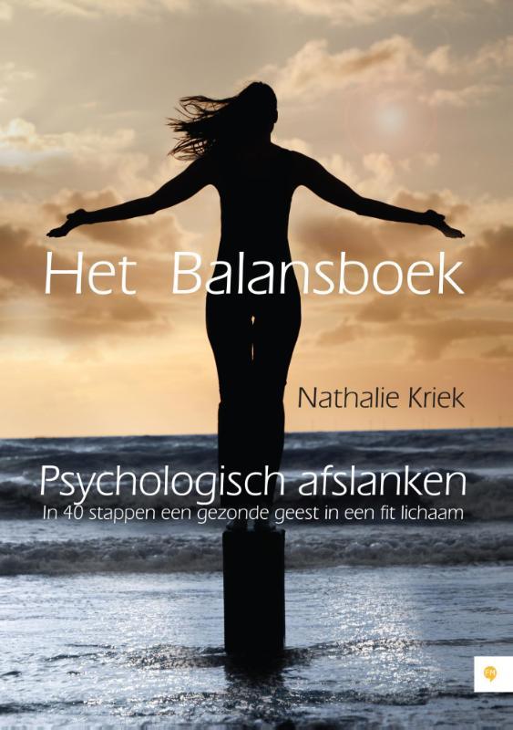 Het balansboek